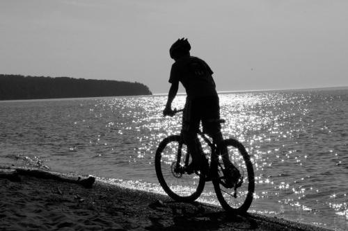 Biking@BarkBay